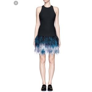 "Elizabeth & James ""Dania"" ombré feather dress 6"